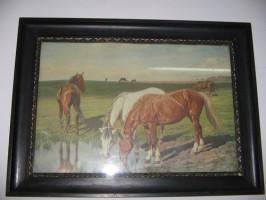 Konie - zabytkowa  reprodukcja